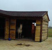 Building the Mega Shelter (aka Pony Palace)
